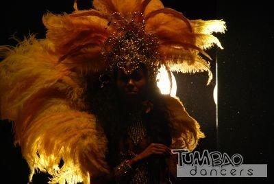 Samba Tänzerin