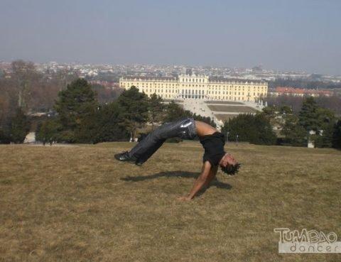 Capoeira Wien